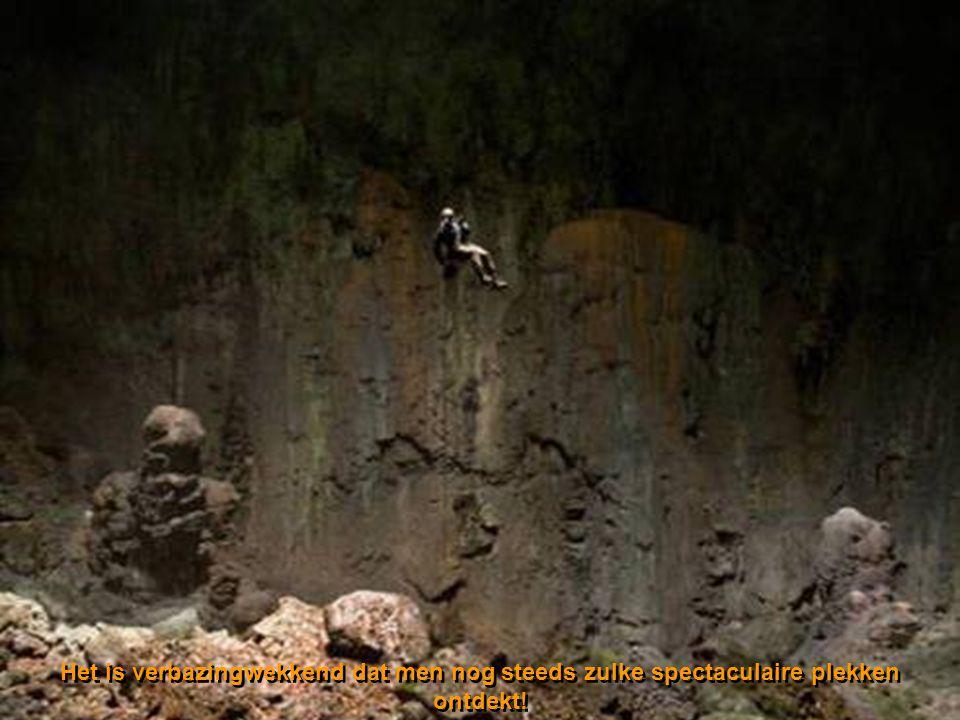 Ingestorte doline - mini jungle 400 m onder de oppervlakte.