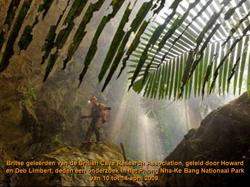 Britse geleerden van de British Cave Research Association, geleid door Howard en Deb Limbert, deden een onderzoek in het Phong Nha-Ke Bang Nationaal Park van 10 tot 14 april 2009.