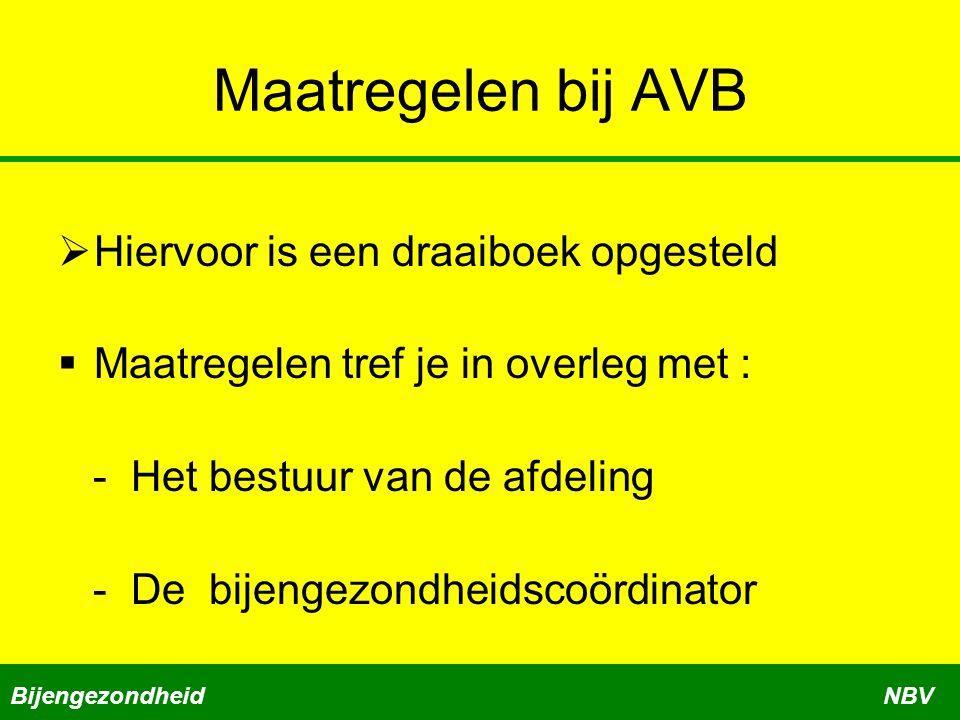 Maatregelen bij AVB  Hiervoor is een draaiboek opgesteld  Maatregelen tref je in overleg met : - Het bestuur van de afdeling - De bijengezondheidsco