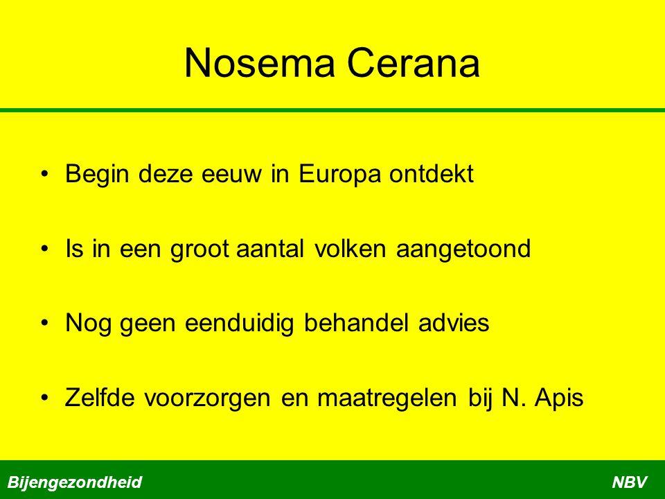 Nosema Cerana Begin deze eeuw in Europa ontdekt Is in een groot aantal volken aangetoond Nog geen eenduidig behandel advies Zelfde voorzorgen en maatregelen bij N.