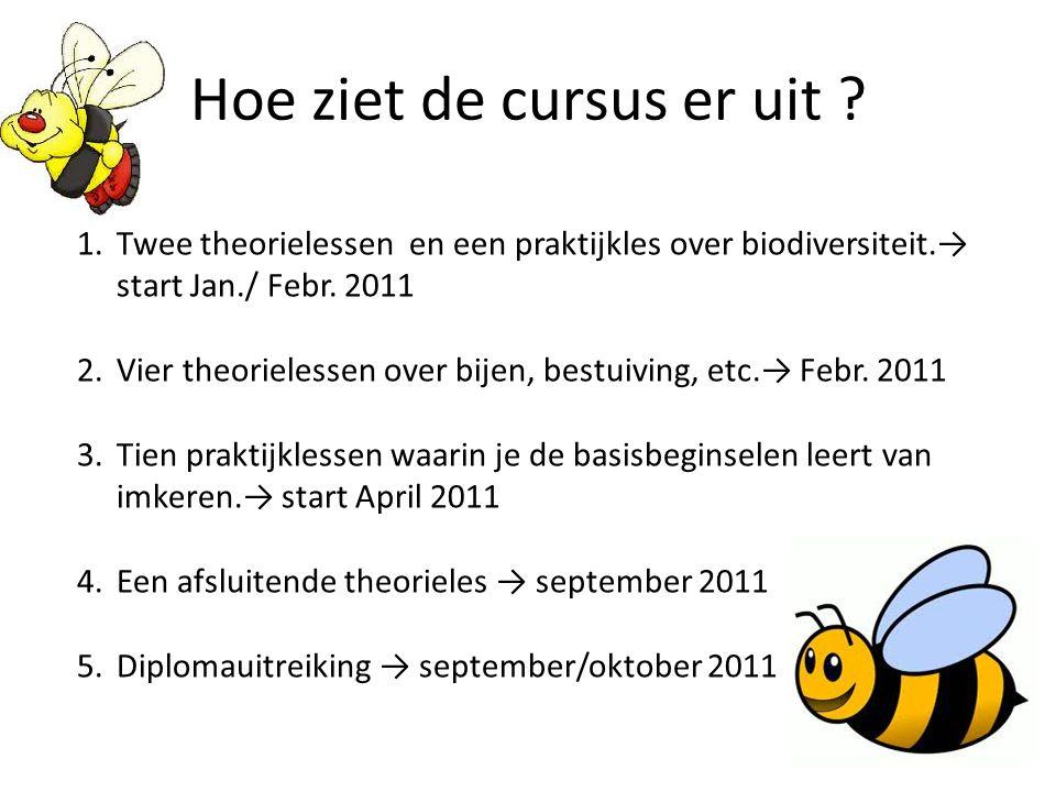 Hoe ziet de cursus er uit ? 1.Twee theorielessen en een praktijkles over biodiversiteit.→ start Jan./ Febr. 2011 2.Vier theorielessen over bijen, best