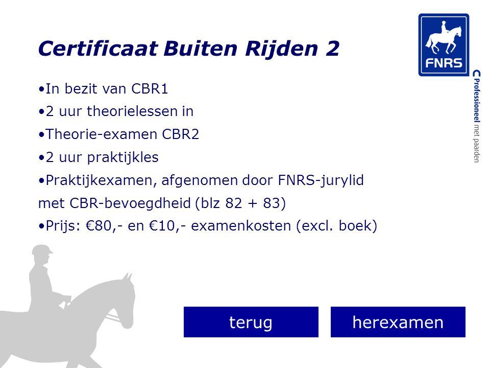 Certificaat Buiten Rijden 2 In bezit van CBR1 2 uur theorielessen in Theorie-examen CBR2 2 uur praktijkles Praktijkexamen, afgenomen door FNRS-jurylid