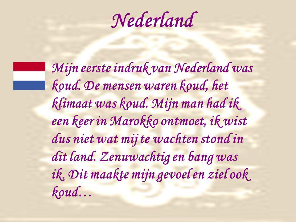 Nederland Mijn eerste indruk van Nederland was koud.