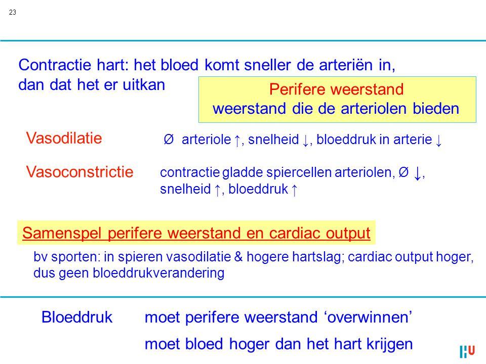 23 Vasoconstrictie Vasodilatie contractie gladde spiercellen arteriolen, Ø ↓, snelheid ↑, bloeddruk ↑ Ø arteriole ↑, snelheid ↓, bloeddruk in arterie