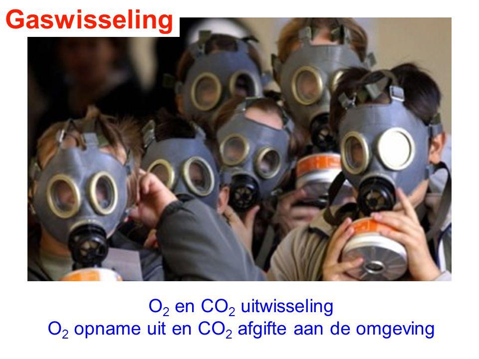 Gaswisseling O 2 en CO 2 uitwisseling O 2 opname uit en CO 2 afgifte aan de omgeving