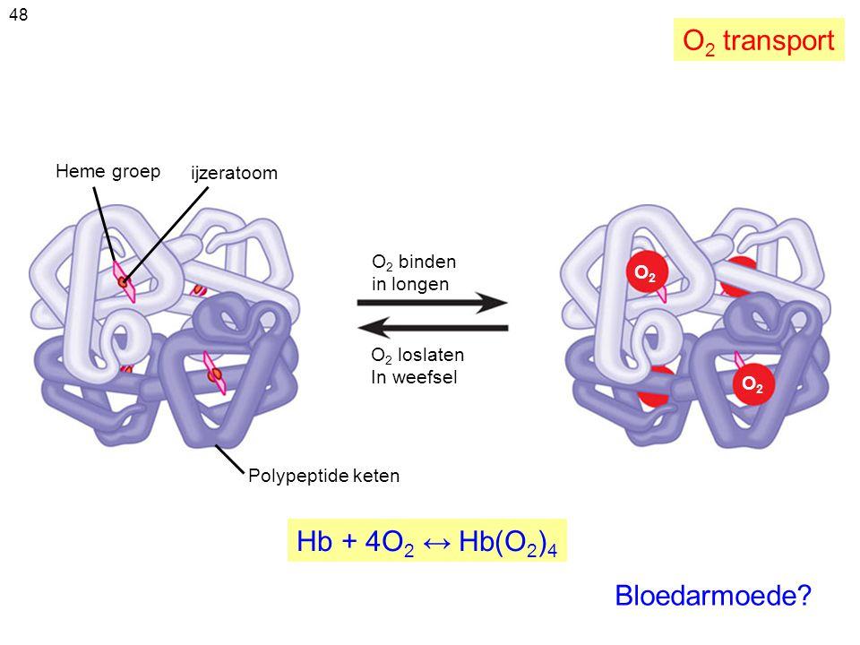 48 Heme groep ijzeratoom O 2 binden in longen O 2 loslaten In weefsel Polypeptide keten O2O2 O2O2 Bloedarmoede? O 2 transport Hb + 4O 2 ↔ Hb(O 2 ) 4