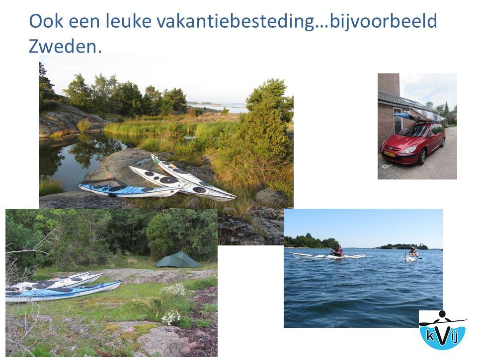 Ook een leuke vakantiebesteding…bijvoorbeeld Zweden.