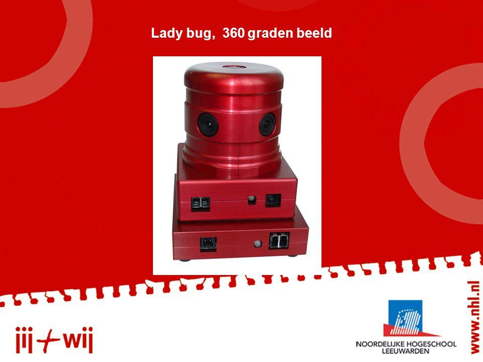 Lady bug, 360 graden beeld