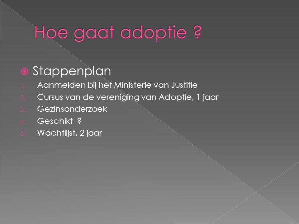  Stappenplan 1.Aanmelden bij het Ministerie van Justitie 2.