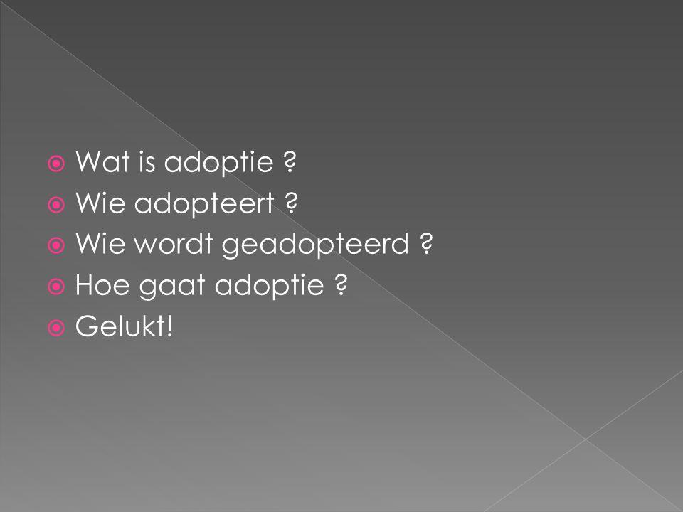  Wat is adoptie ?  Wie adopteert ?  Wie wordt geadopteerd ?  Hoe gaat adoptie ?  Gelukt!