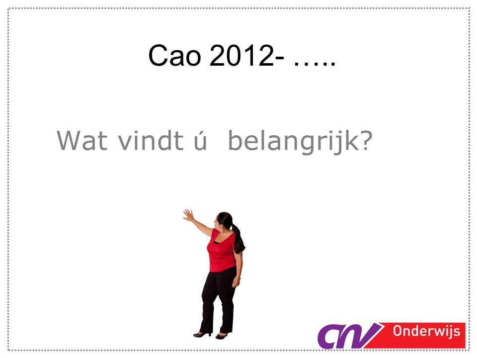 Cao 2012- ….. Wat vindt ú belangrijk?