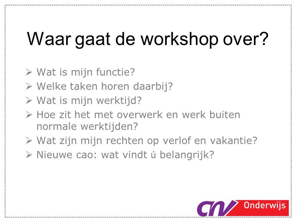 Waar gaat de workshop over?  Wat is mijn functie?  Welke taken horen daarbij?  Wat is mijn werktijd?  Hoe zit het met overwerk en werk buiten norm