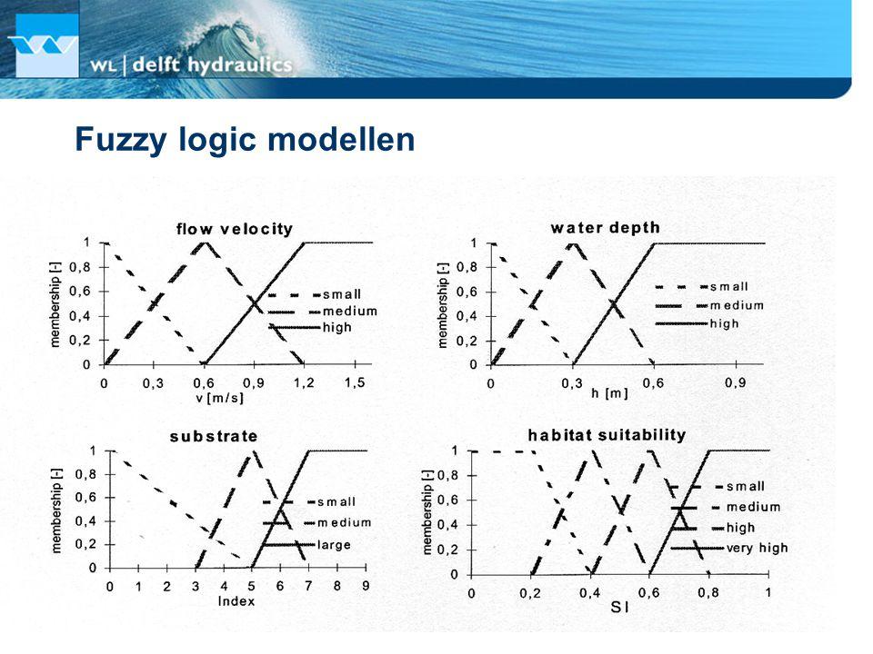 Fuzzy logic modellen