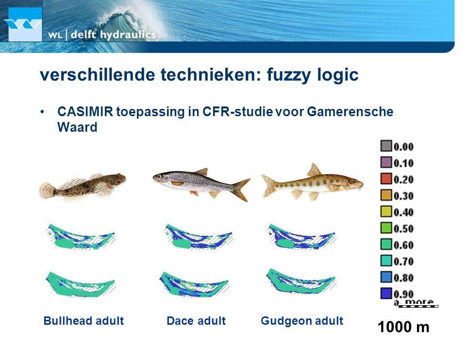 verschillende technieken: fuzzy logic CASIMIR toepassing in CFR-studie voor Gamerensche Waard 1000 m Bullhead adultDace adultGudgeon adult
