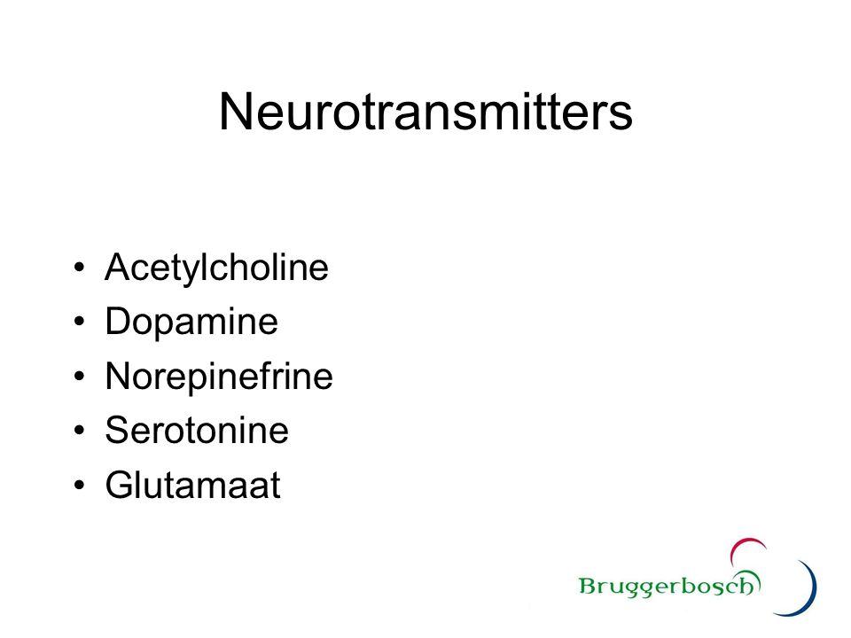 Neurotransmitters Acetylcholine Dopamine Norepinefrine Serotonine Glutamaat