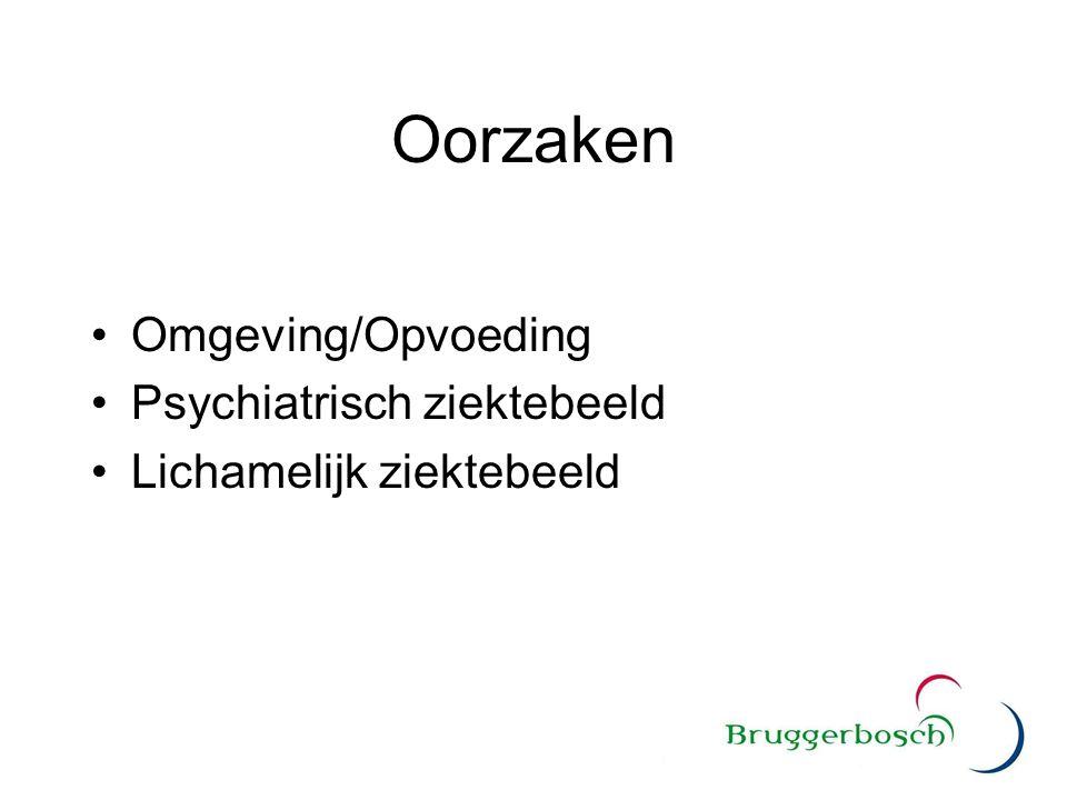 Oorzaken Omgeving/Opvoeding Psychiatrisch ziektebeeld Lichamelijk ziektebeeld