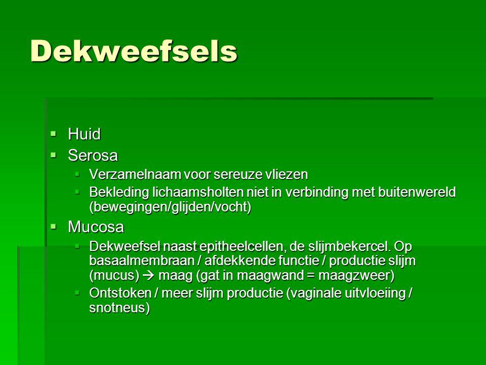 Dekweefsels  Huid  Serosa  Verzamelnaam voor sereuze vliezen  Bekleding lichaamsholten niet in verbinding met buitenwereld (bewegingen/glijden/vocht)  Mucosa  Dekweefsel naast epitheelcellen, de slijmbekercel.