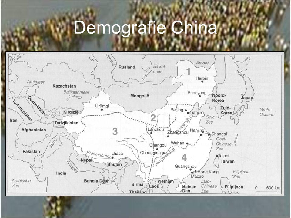 Demografie China