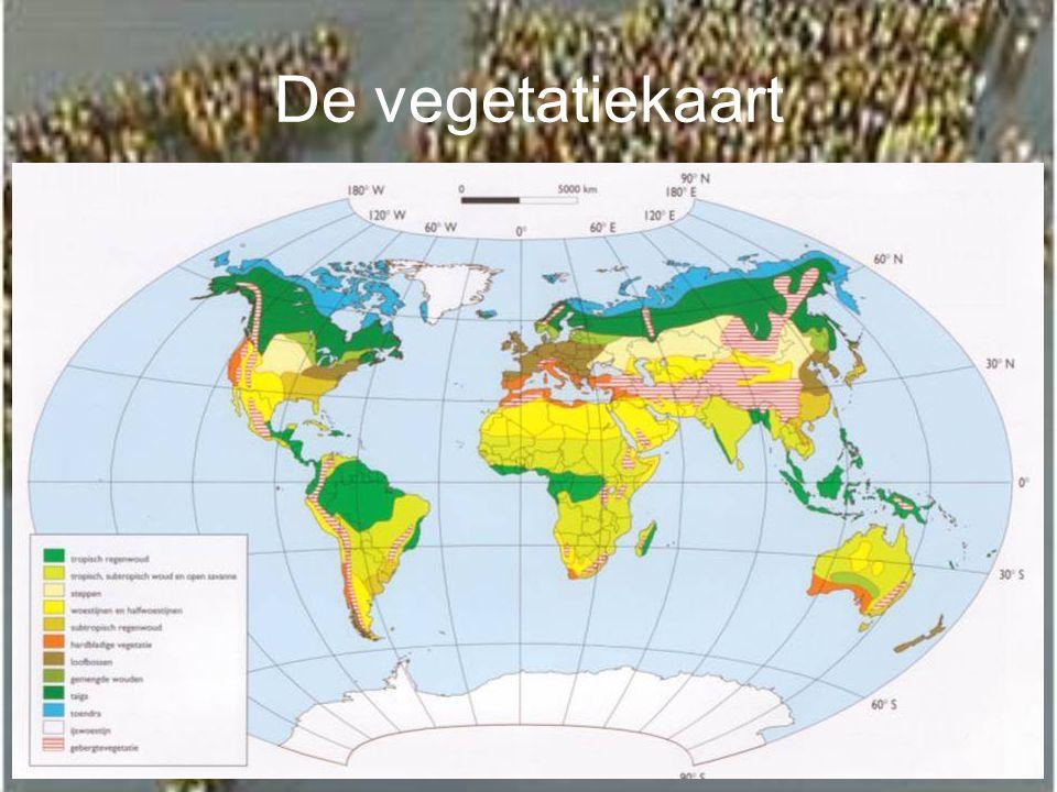 De vegetatiekaart