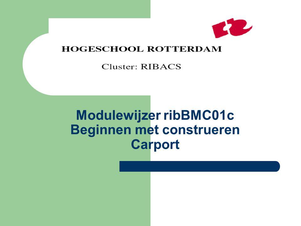 Modulewijzer ribBMC01c Beginnen met construeren Carport