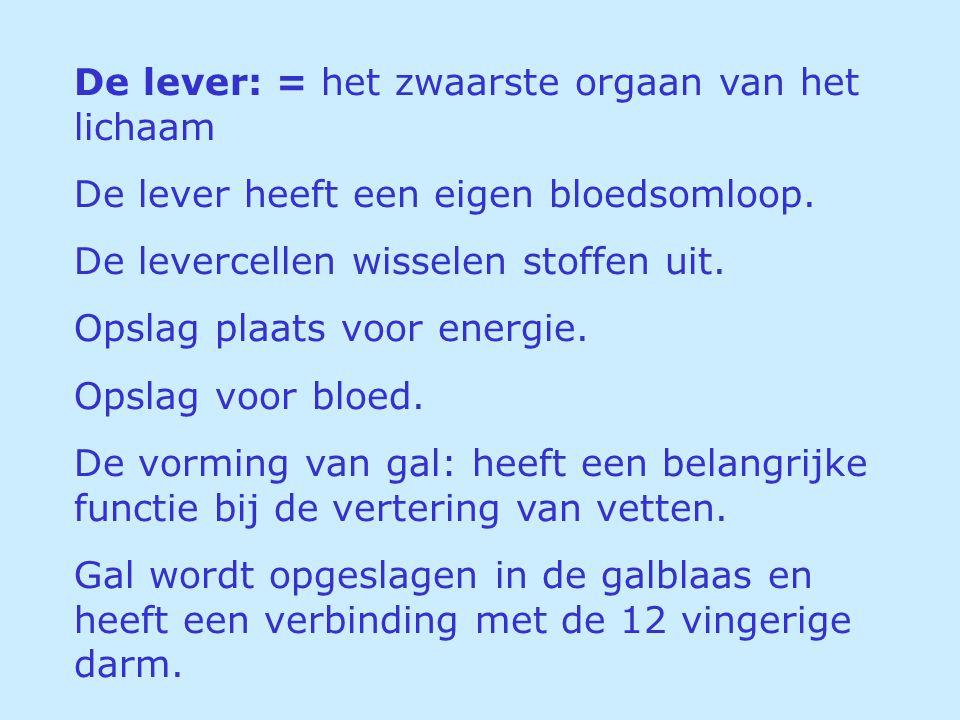 De lever: = het zwaarste orgaan van het lichaam De lever heeft een eigen bloedsomloop. De levercellen wisselen stoffen uit. Opslag plaats voor energie