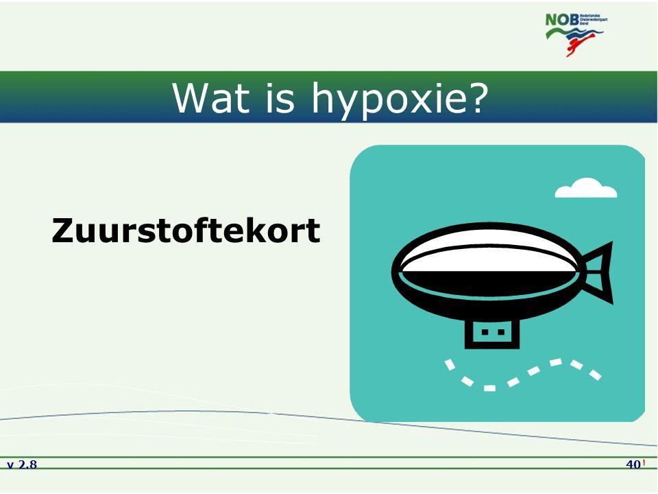 v 2.840 Wat is hypoxie? Zuurstoftekort