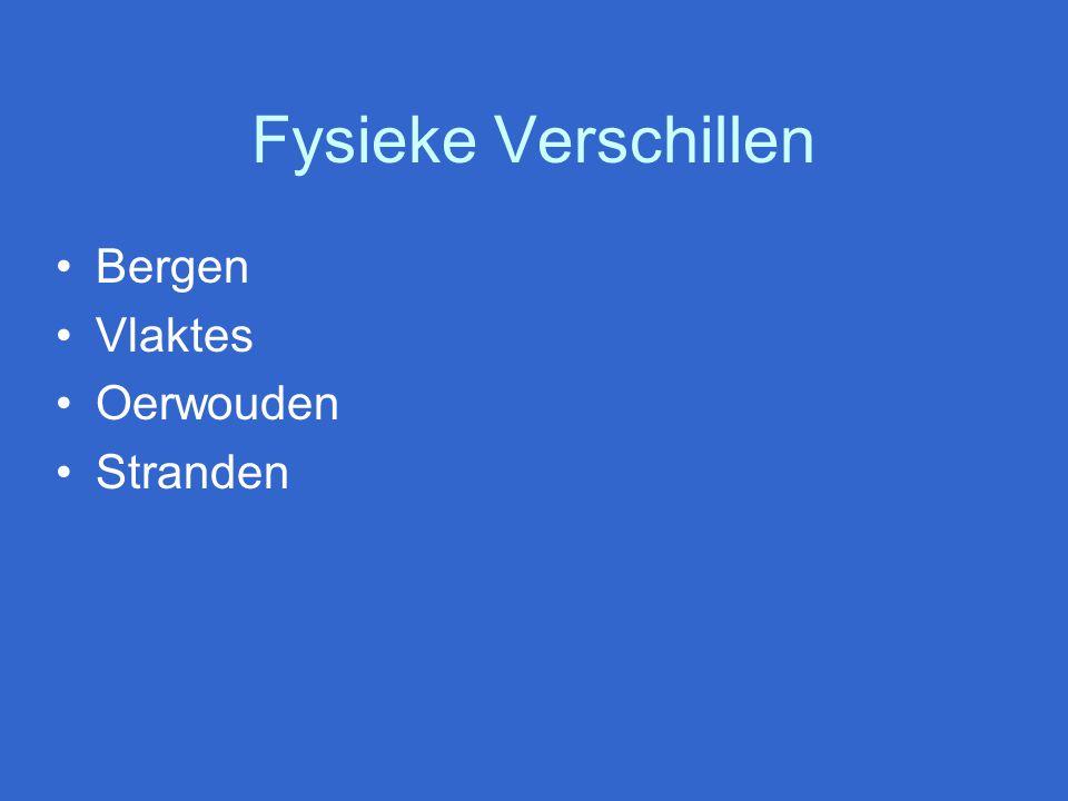 Fysieke Verschillen Bergen Vlaktes Oerwouden Stranden
