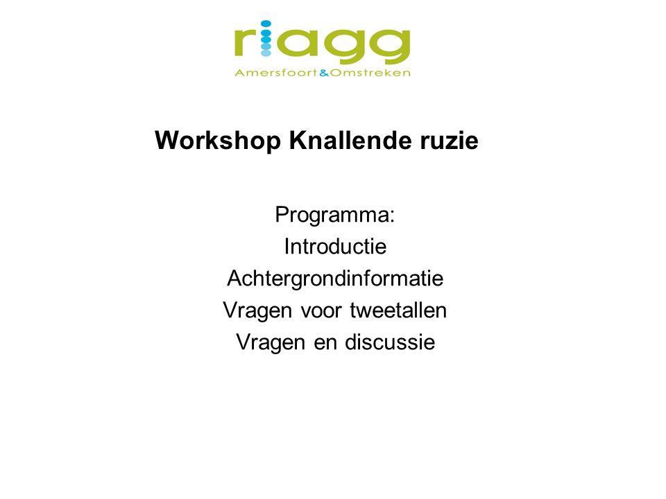 Workshop Knallende ruzie Programma: Introductie Achtergrondinformatie Vragen voor tweetallen Vragen en discussie