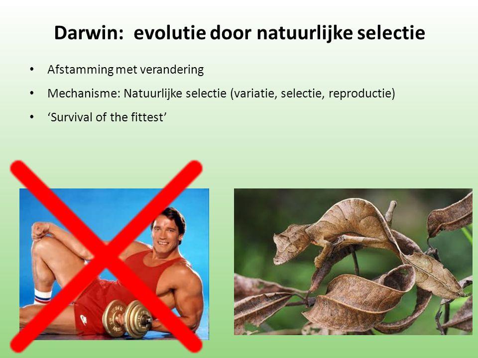 Darwin: evolutie door natuurlijke selectie Afstamming met verandering Mechanisme: Natuurlijke selectie (variatie, selectie, reproductie) 'Survival of the fittest'