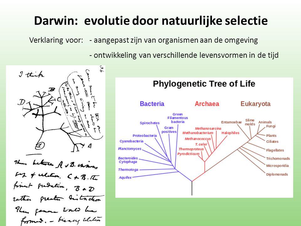 Verklaring voor:- aangepast zijn van organismen aan de omgeving - ontwikkeling van verschillende levensvormen in de tijd Darwin: evolutie door natuurlijke selectie