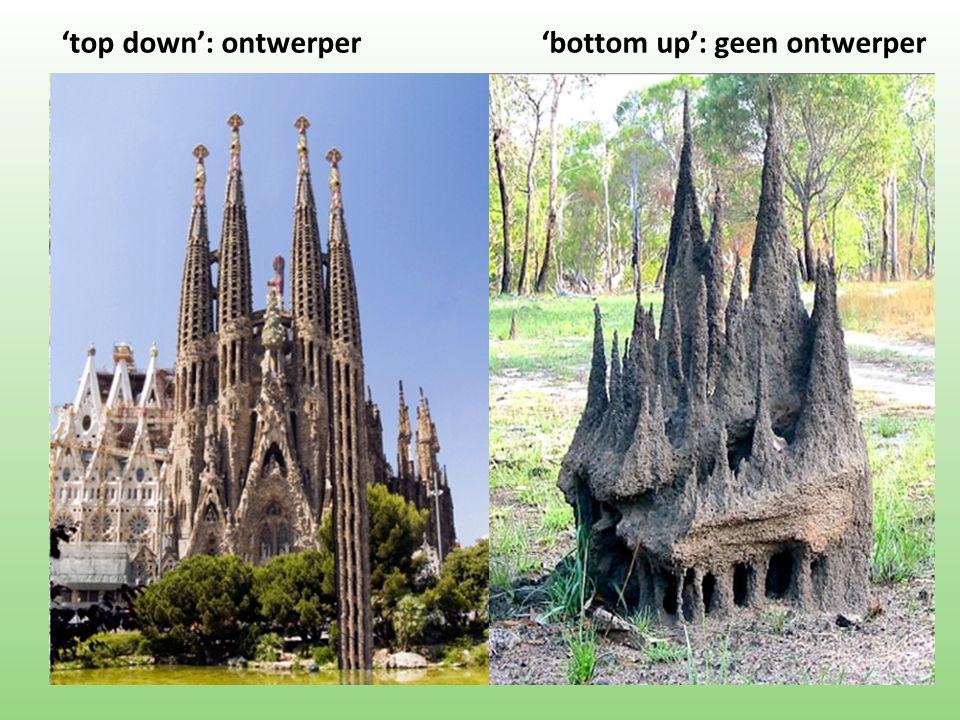 'top down': ontwerper'bottom up': geen ontwerper