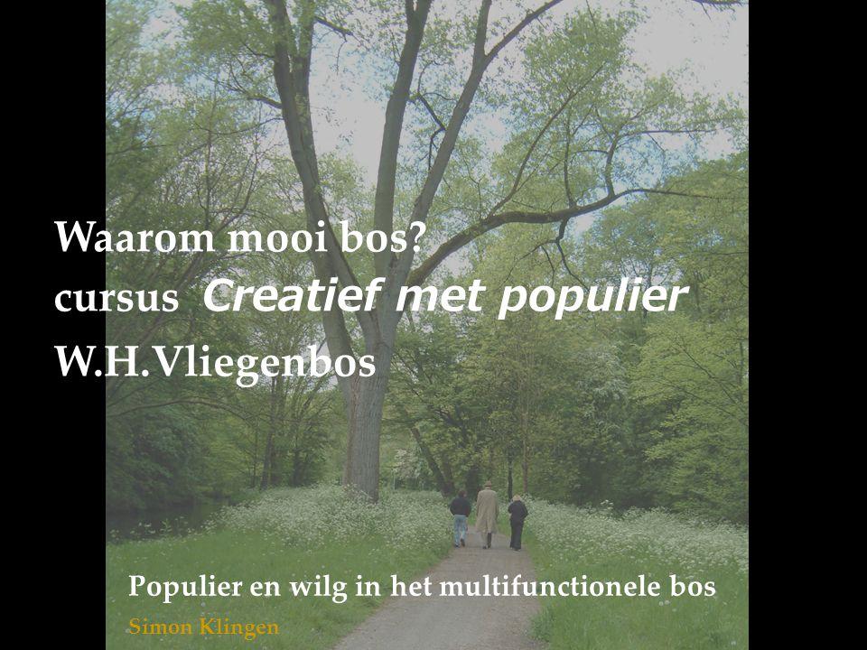 Waarom mooi bos? cursus Creatief met populier W.H.Vliegenbos