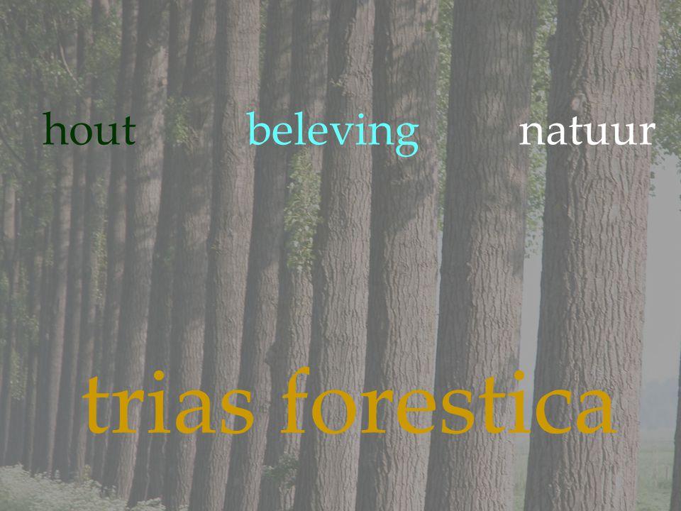 houtbelevingnatuur trias forestica