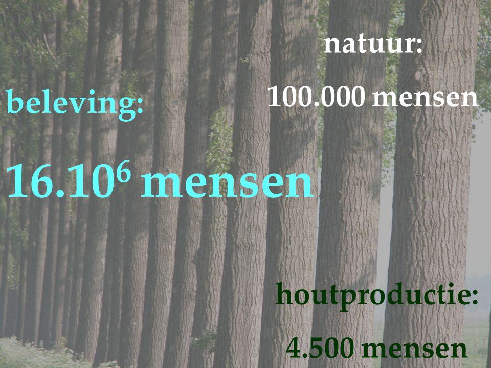houtproductie: 4.500 mensen beleving: 16.10 6 mensen natuur: 100.000 mensen