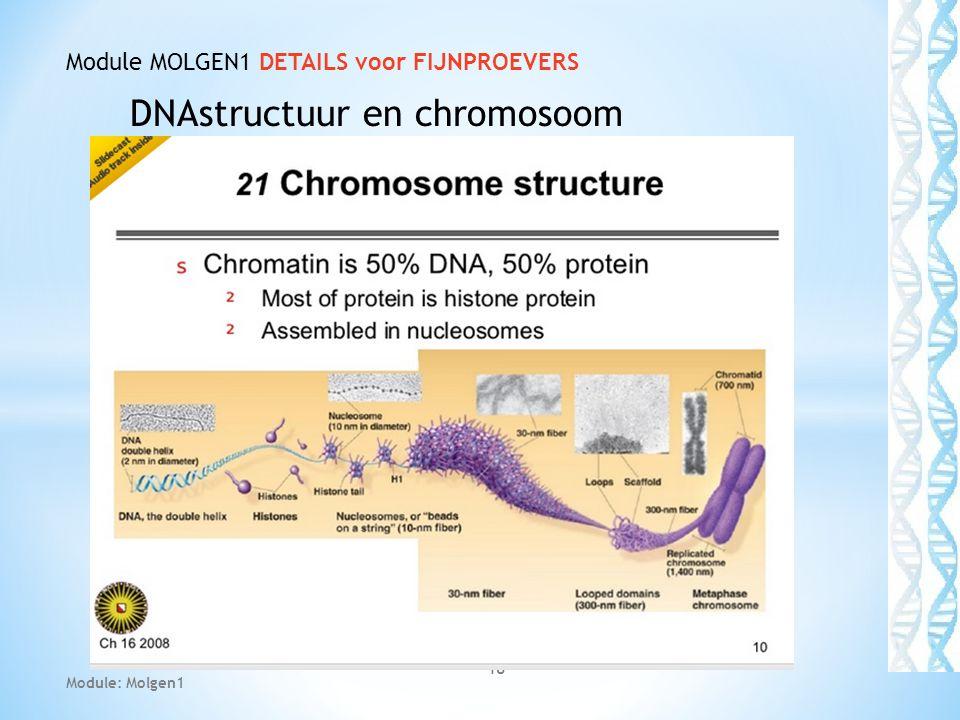 DNAstructuur en chromosoom 18 Module MOLGEN1 DETAILS voor FIJNPROEVERS Module: Molgen1