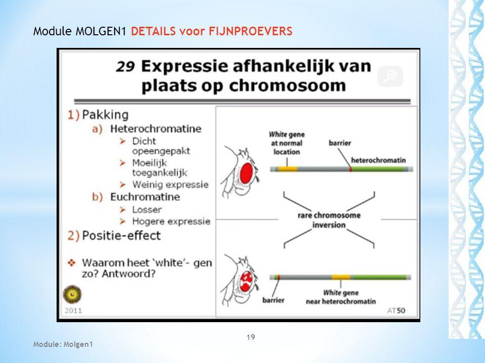 19 Module: Molgen1 Module MOLGEN1 DETAILS voor FIJNPROEVERS