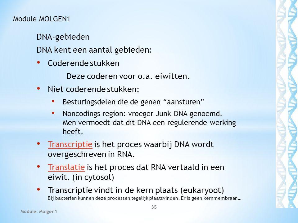 """DNA-gebieden DNA kent een aantal gebieden: Coderende stukken Deze coderen voor o.a. eiwitten. Niet coderende stukken: Besturingsdelen die de genen """"aa"""