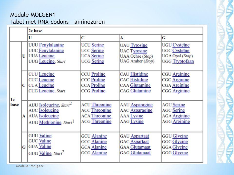 45 Module MOLGEN1 Tabel met RNA-codons - aminozuren Module: Molgen1