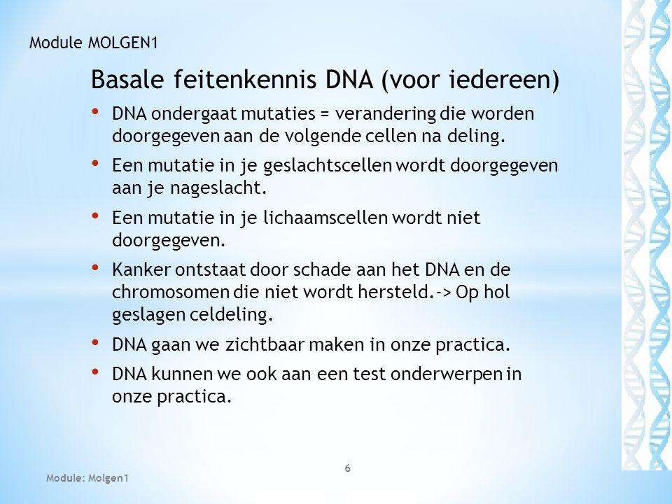 DNA-duplicatie Bij dit proces zijn tal van enzymen betrokken die DNA opensplijten (helicase), afschermen(ssDNAbp), voorzien van een primer(primase), aaneenrijgen (polymerase), ontwarren (topo-isomerase), gaatje dichten (ligase)..etc… Module: PCR analyse en Gelelectroforese 27 Module MOLGEN1