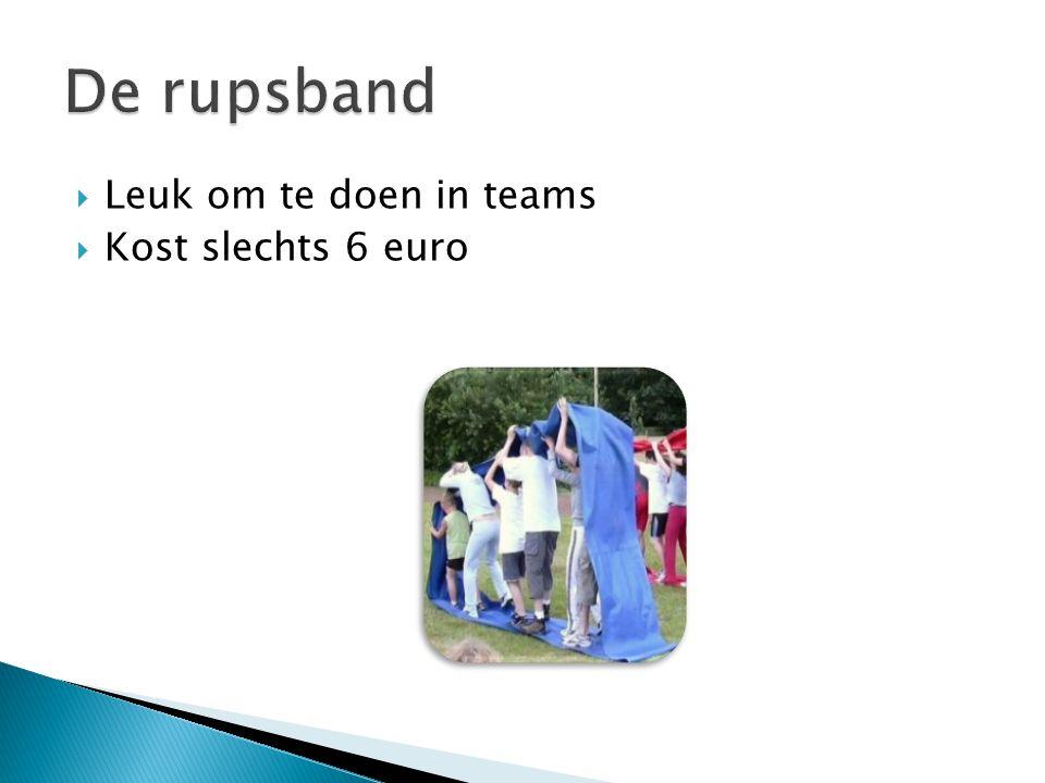  Leuk om te doen in teams  Kost slechts 6 euro
