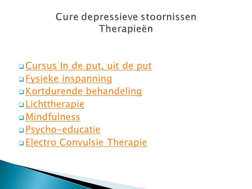  Cursus In de put, uit de put Cursus In de put, uit de put  Fysieke inspanning Fysieke inspanning  Kortdurende behandeling Kortdurende behandeling