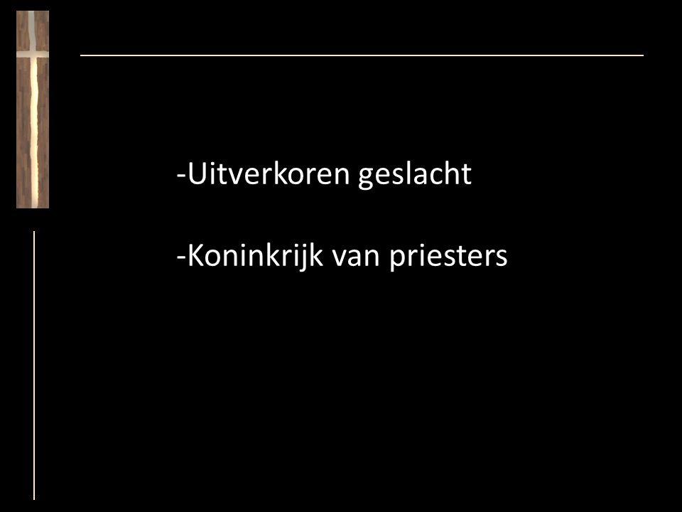 -Koninkrijk van priesters