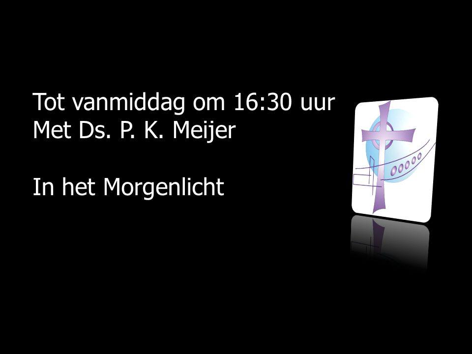 Tot vanmiddag om 16:30 uur Met Ds. P. K. Meijer In het Morgenlicht