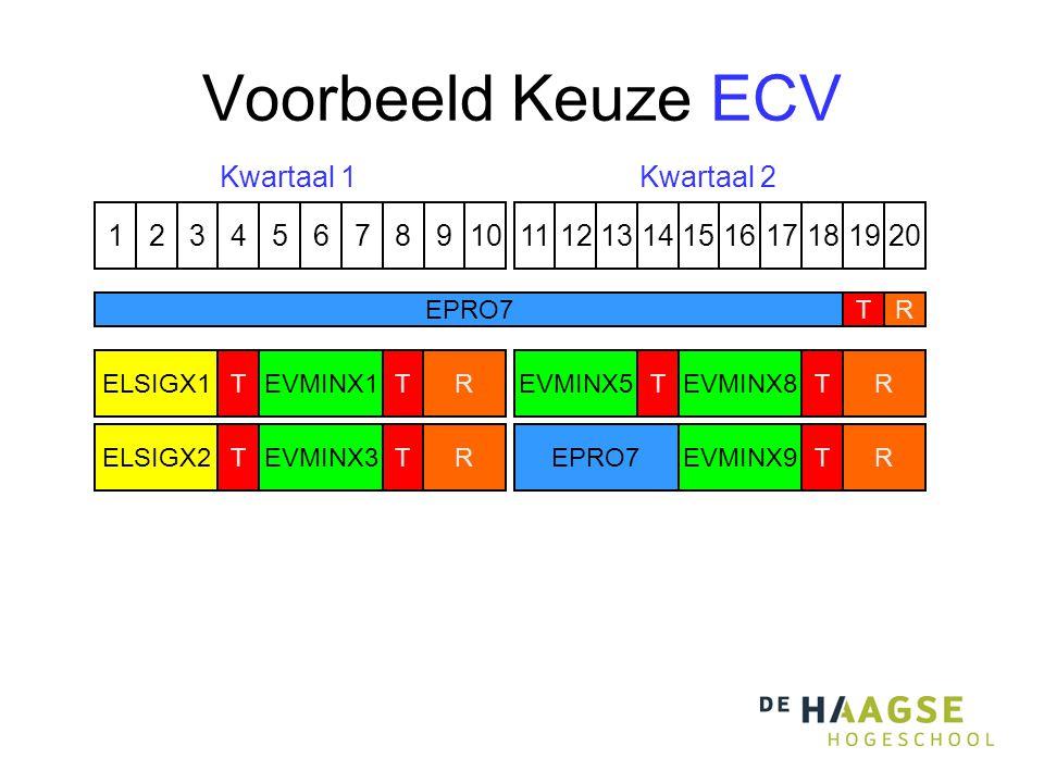 Voorbeeld Keuze ECV 1324576891110121315141617191820 EVMINX8 T EVMINX9 T EVMINX5 TELSIGX1 ELSIGX2 T T R R R R EPRO7T R Kwartaal 1Kwartaal 2 3 CP EVMINX1T EVMINX3 T EPRO7