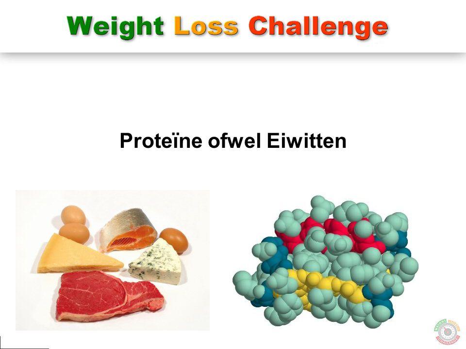 40 Proteïne ofwel Eiwitten