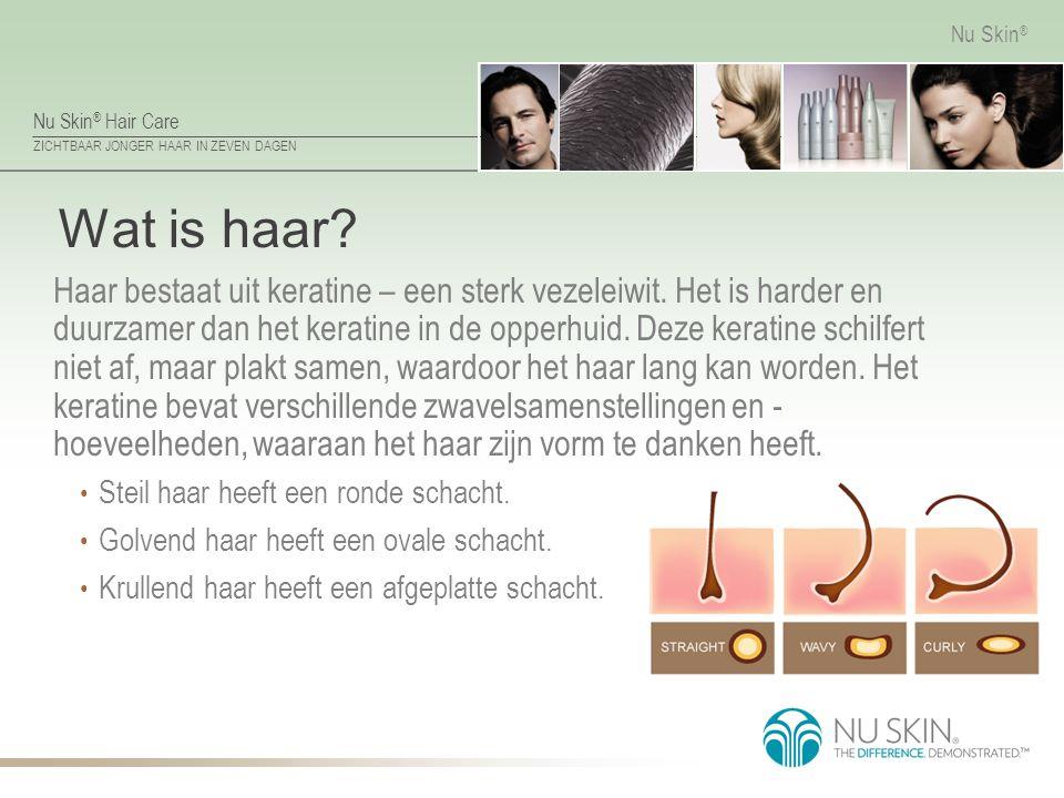Nu Skin ® Hair Care ZICHTBAAR JONGER HAAR IN ZEVEN DAGEN Nu Skin ® Haarschacht De haarschacht bestaat uit de: medulla (merg) – de kern cortex – de middelste laag cuticula – de buitenste laag, die blootstaat aan stress en beschadiging
