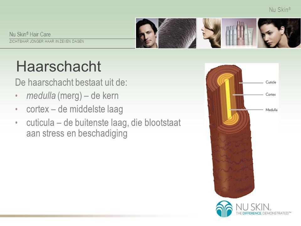 Nu Skin ® Hair Care ZICHTBAAR JONGER HAAR IN ZEVEN DAGEN Nu Skin ® Haarschacht De haarschacht bestaat uit de: medulla (merg) – de kern cortex – de mid