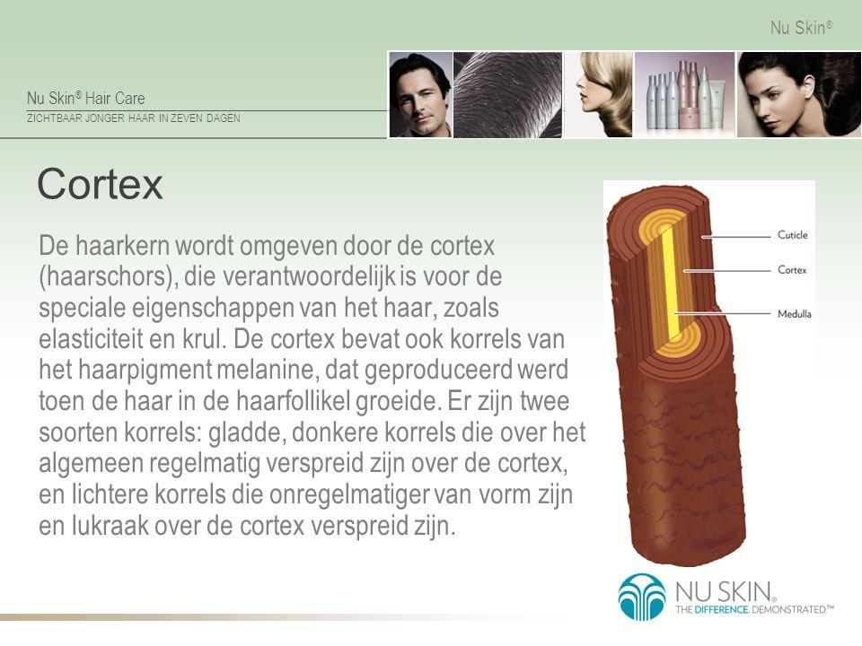 Nu Skin ® Hair Care ZICHTBAAR JONGER HAAR IN ZEVEN DAGEN Nu Skin ® Cortex De haarkern wordt omgeven door de cortex (haarschors), die verantwoordelijk