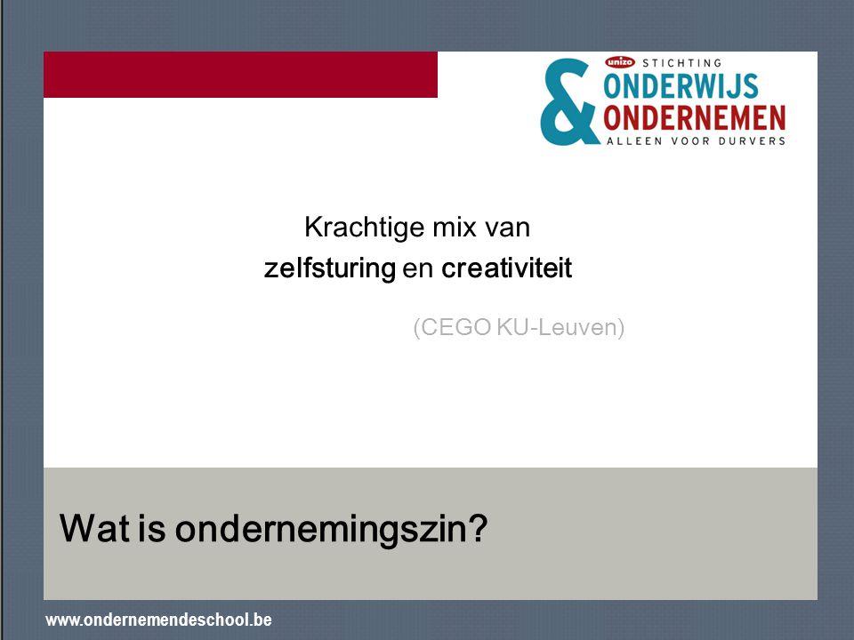 www.ondernemendeschool.be Wat is ondernemingszin? Krachtige mix van zelfsturing en creativiteit (CEGO KU-Leuven)