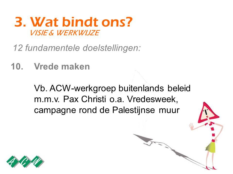 3. Wat bindt ons? VISIE & WERKWIJZE Vrede maken Vb. ACW-werkgroep buitenlands beleid m.m.v. Pax Christi o.a. Vredesweek, campagne rond de Palestijnse